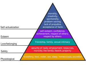 640px-Maslow's_Hierarchy_of_Needs.svg